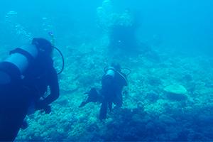 潜水士 イメージ
