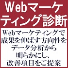 Webマーケティングで成果を伸ばす方向性をデータ分析から明確にし、成果創出に向け改善項目を提案:Webマーケティング診断