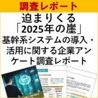 【独自調査レポート】迫まりくる「2025年の崖」『基幹系システムの導入・活用に関する企業アンケート調査レポート』