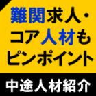 サーチ型ピンポイント人材紹介