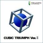 業界初の適性検査「CUBIC TRIUMPHver.Ⅱ」_画像