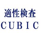 適性検査CUBIC(キュービック)_画像