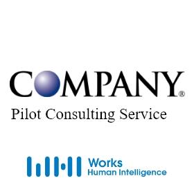 システム選定支援(Pilot Consulting Service)