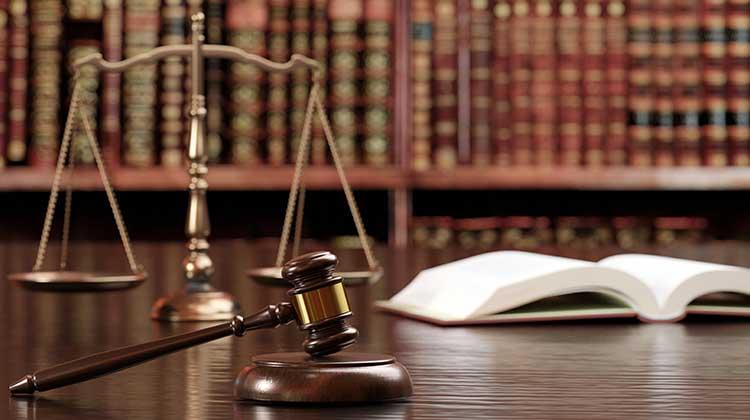 ダイバーシティ&インクルージョンに関する法律・制度